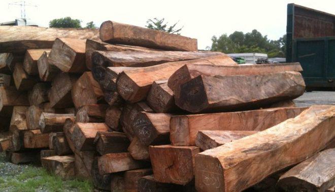 Hình ảnh những khối gỗ lim để sử dụng làm nhà