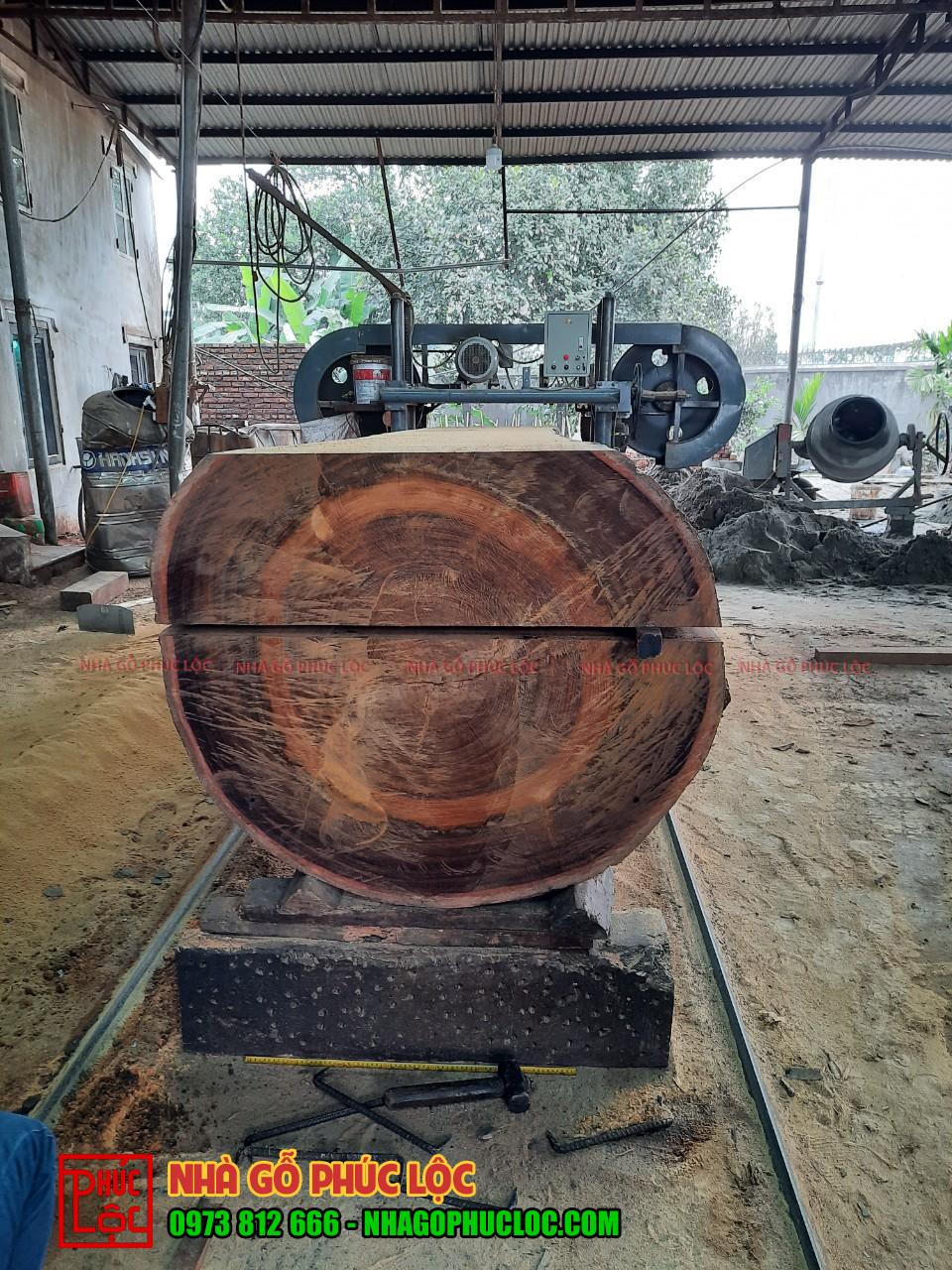 Hình ảnh cây gỗ lim được xẻ làm đôi