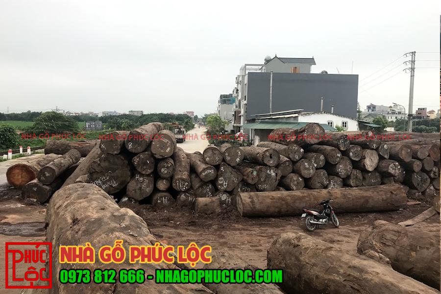 Toàn cảnh bãi gỗ