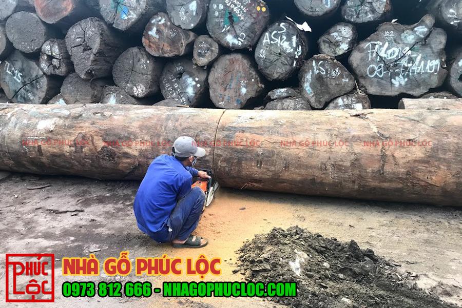 Hình ảnh thợ xẻ cắt các khối gỗ to và dài