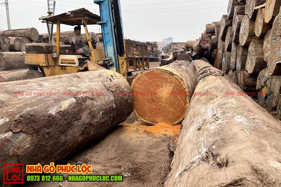 Hình ảnh cột gỗ gõ đỏ Nam Phi có kích thước lớn
